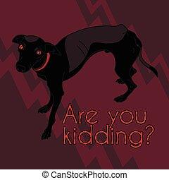 Vektorbild mit wütendem italienischem Windhund.