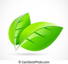 Vektorgrünes Blatt