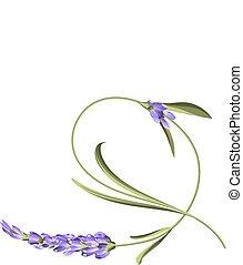 Verbogene Single-Blume.