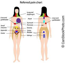 Vergleichte Schmerzkarte, Eps8