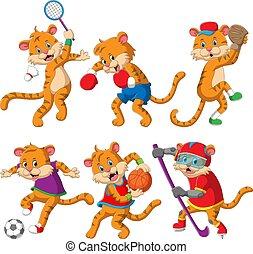 verschieden, sportliche , tiger, sammlung, spielenden sport