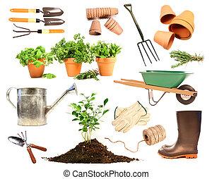 Verschiedene Objekte für die Frühlingsanpflanzung auf weiß.