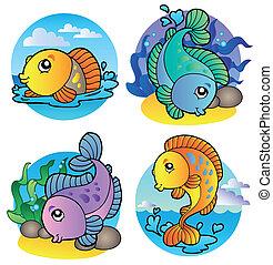 Verschiedene Süßwasserfische 1