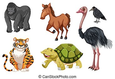 Verschiedene wilde Tiere.