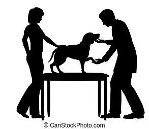 Vet untersucht Hund.