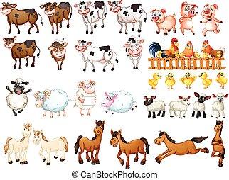 Viele Arten von Bauerntieren.