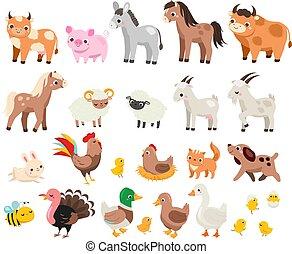 viele, farm., reizend, children., haustiere, tiere, kinder, karikatur, kuh, schwein, satz, groß, pferd, bauernhof, andere