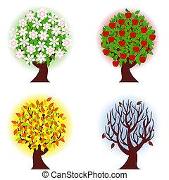 Vier Jahreszeiten Apfelbaum.