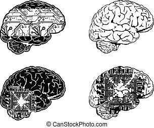 Vierfarbige Sicht auf elektronische Gehirne.