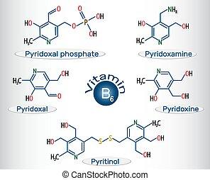 Vitamin B6 (Pyridoxalphosphat, pyridoxamine, pyridoxal , pyritinol, pyridoxine). Strukturelle chemische Formel und Molekülmodell