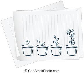 wachsen, pflanze, papier, zeichnung