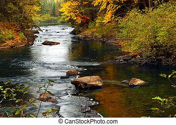 Waldfluß im Herbst