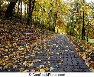 Wanderweg im Herbst-Stadtpark mit gelb gefallenen Blättern.