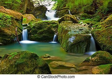 Wasserfall in grüner Natur