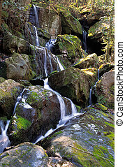 Wasserfall-Smoky Mountain Nationalpark