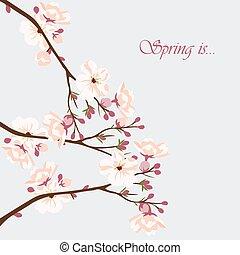Wasserfarbener Hintergrund mit blühenden Kirschblüten