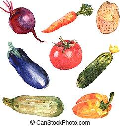 Wasserfarbenes Gemüse.