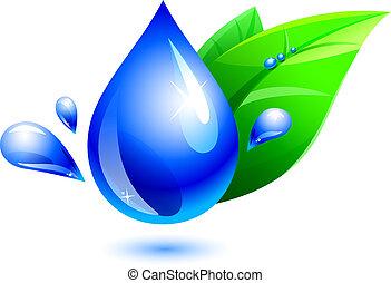Wassertropfen und Blätter