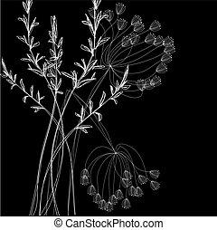 Weiße Feldblumen
