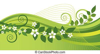 Weiße Jasminblumen, grüne Wirbel
