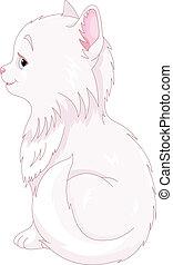 Weiße Katze.
