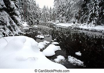Weiße Winterlandschaft