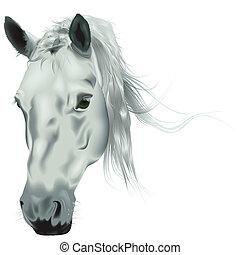 Weißer Pferdekopf.
