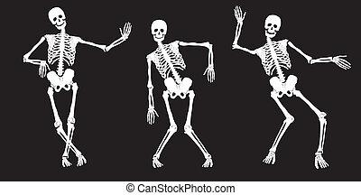 weißes, black., tanzen, skelette
