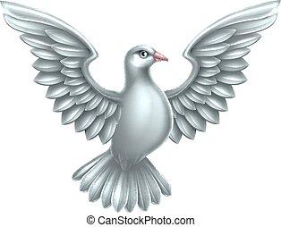 Weißes Taubenkonzept.