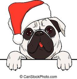 weihnachten, hund, hut