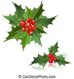 Weihnachtsblumen-Holly Berry