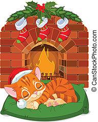 Weihnachtskatze schläft.