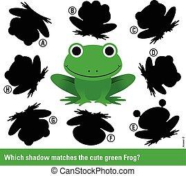 Welcher Schatten passt zu dem grünen Cartoon Frosch.