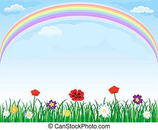 wiese, aus, regenbogen, blumen, gras