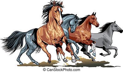 Wilde Pferde.