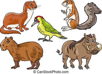 Wilde Tiere zeigen Zeichentrickfilme.