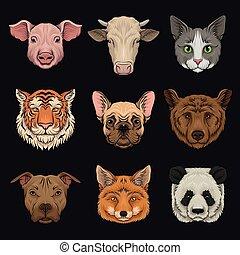 Wilde und einheimische Tiere Set, Schweineköpfe, Kuh, Bulldog, Katze, Bär, Pug, Tiger, Fuchshand gezeichnet Vektor Illustrations.