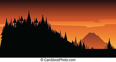 Wilderness Hills.