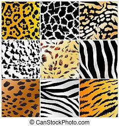 Wildtiere häuten Muster