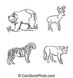 Wildtiere im Zeichenstil.