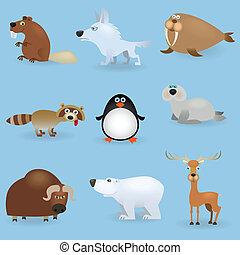 Wildtiere setzen #3 (North)