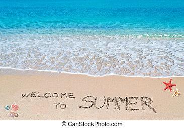 Willkommen im Sommer.