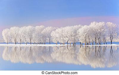 Winterbäume mit Frost bedeckt.
