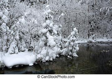 Winterszene am frostigen Tag