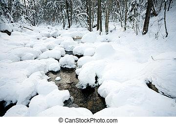 Winterwaldfluss unter dem Schnee