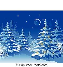 Winterweihnachtswald in der Nacht