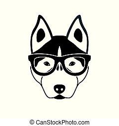 wohnung, brille, hund, schwarz, heiser, porträt, weißes, style.