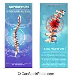 wohnung, orthopädie, satz, traumatology, banner.