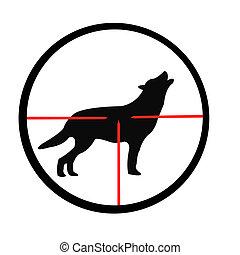 Wolf in optischer Sicht