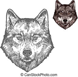 Wolfsmuschel-Vektor isolierte Phantomzeichner